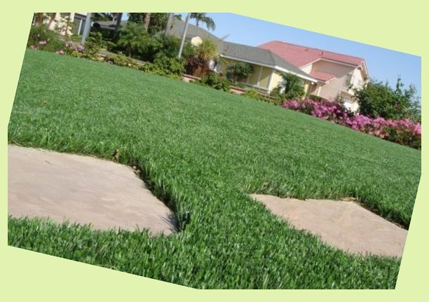 Practice Better - artificial golf grass products   Outdoor ...