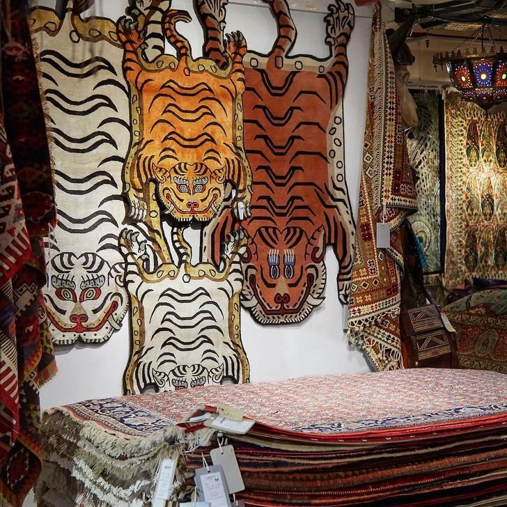 Best 25+ Tiger Rug Ideas On Pinterest