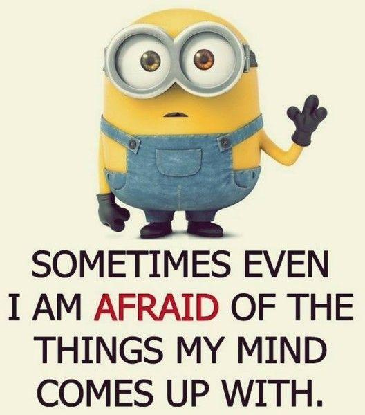 Best 25+ Minion meme ideas on Pinterest | Minion pictures ...