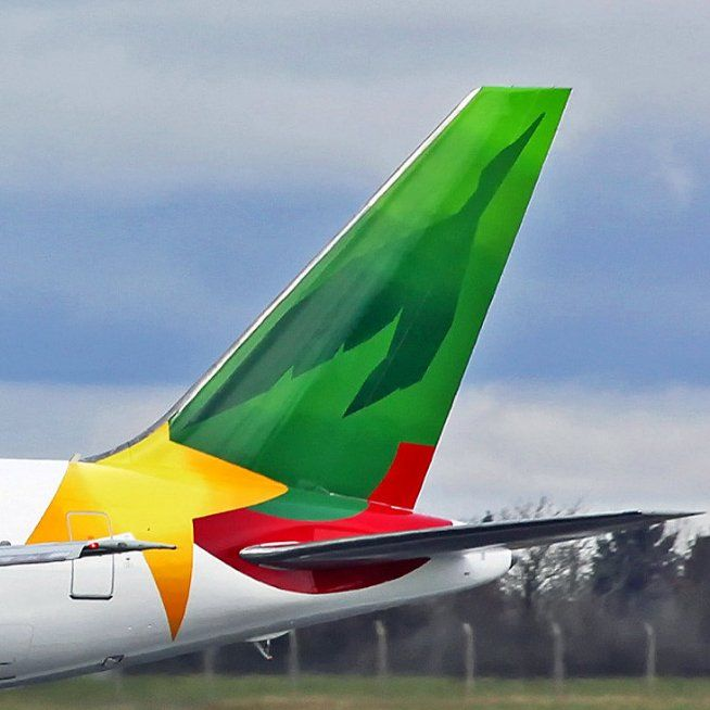 Cameroon Airlines B767-300 tail