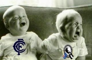 Carlton flogs Collingwood...