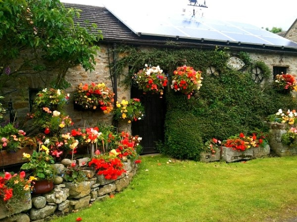 Best Begonias in Bellerby North Yorkshire UK Our tips for things to do in