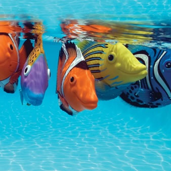 25 best ideas about fish pool on pinterest solar pool for Solar fish for pools