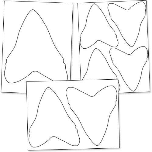 dinosaur tooth coloring pages - photo#26