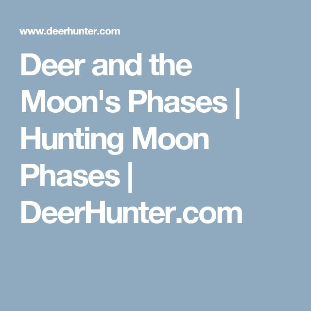 Deer and the Moon's Phases | Hunting Moon Phases | DeerHunter.com