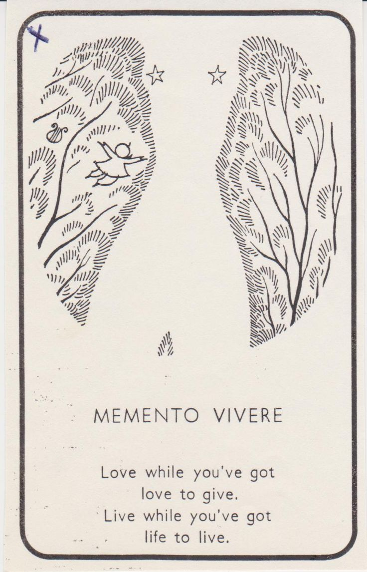 unknown...Memento Vivere is Latin meaning 'Remember To Live'