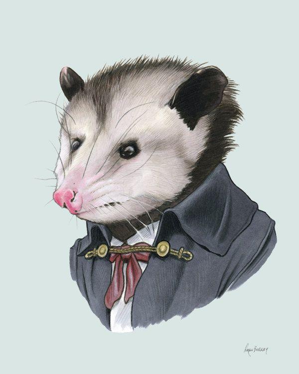 Opossum art print 11x14. $35.00, via Etsy.