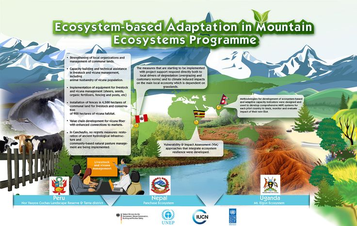 UNDP: Ecosystem-based adaptation in mountain ecosystems   This poster describes a joint project which worked to develop ecosystem-based adaptation mechanisms in three countries, Peru, Nepal and Uganda. The project has developed measures that respond to local drivers of degredation such as overgrazing as well as to climate induced impacts.    The project  designed and developed m&e systems for each pilot country to track monitor and evaluate the impact of their new ecosystem-based adaptation…