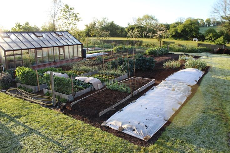 628 best images about vegetable  u0026 herb gardening on pinterest