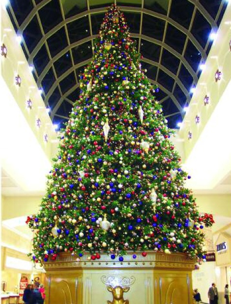 335 best Working Christmas Trees - trees in publicspaces images on ...