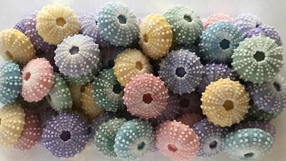 Lot of 50  SPRING Sea Urchin Soaps  Beach Soap Nautical
