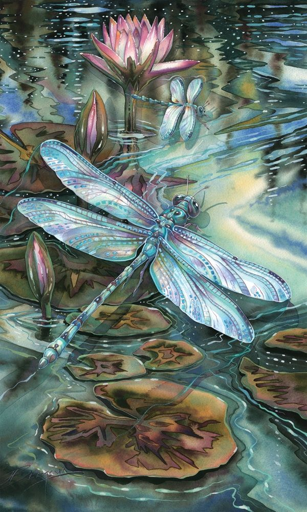 Bergsma Gallery Press :: Paintings :: Natural Elements :: Insects & Amphibians :: Dragonflies :: Wild and Precious Life - Prints