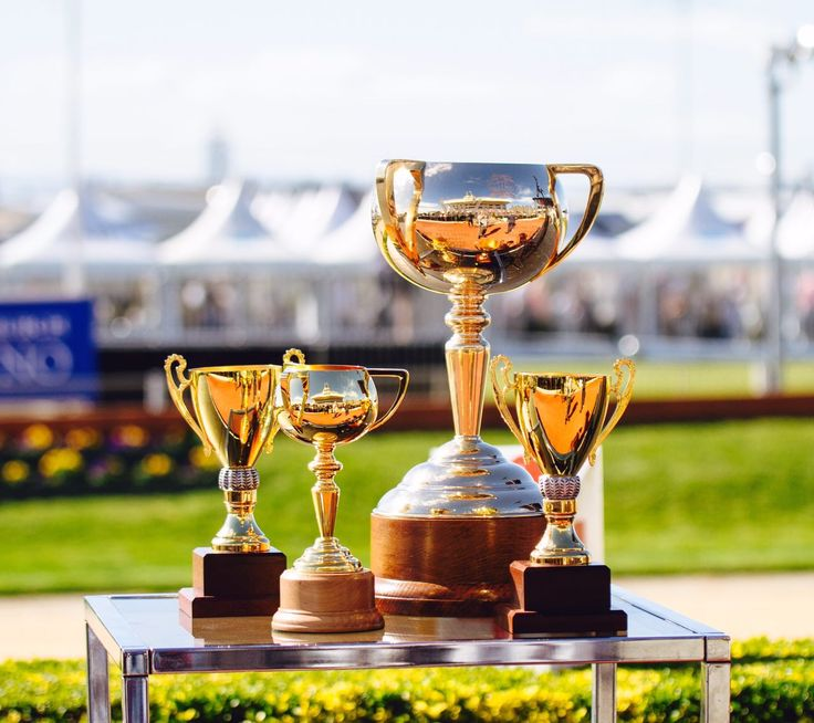 Christchurch Casino NZ Trotting Cup Day
