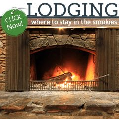 Smoky Mountain Cabin Rentals - Smoky Mountain Cabins in Gatlinburg, Pigeon Forge, and Sevierville, TN