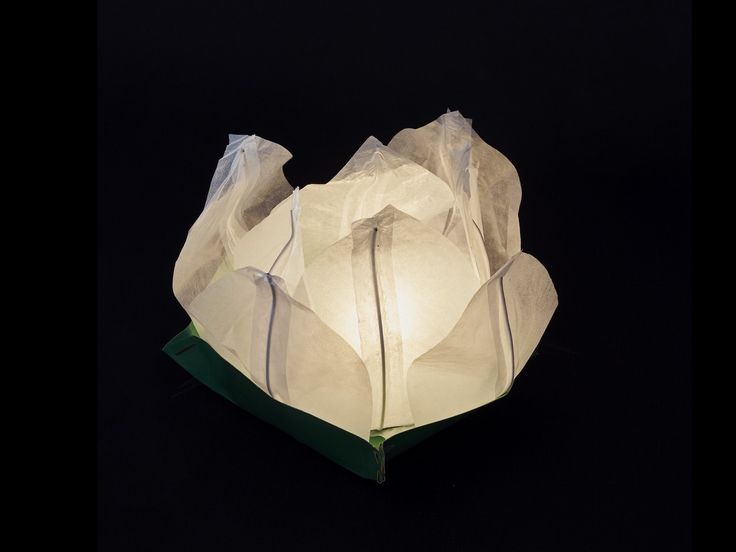 Ninfea Galleggiante di carta di riso bianca.Diametro 30 cm. Sono inclusi la candela, il manuale e il pennarello. Riutilizzabile, basta cambiare la candela.Istruzioni, la preparazione è molto facileScrivere...