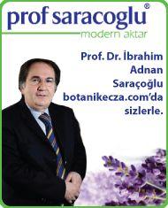 İbrahim Saraçoğlu, Kürleri , Ürünleri, Ankara Şubesi