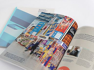 Best Annual Reports  Brochure Design Images On
