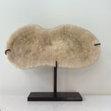 koraal op standaard inspiratie styling, brobbelinterieur