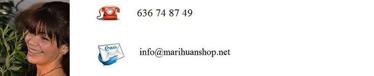 Marihuana Shop Marihuana Shop www.marihuanashop.net semillas BARATAS y de la mejor calidad a granel. FEMINIZADAS y AUTOFLORECIENTES. Envio Anonimo y discreto. 24-72 horas estan en tu casa. Con toda la confianza y calidad. www.marihuanashop.net