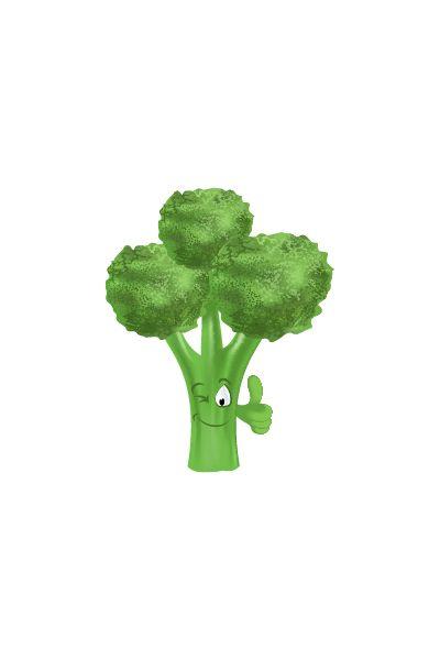 Broccoli Vector #Vegetables #Vector   #vectorpack #vegetablevector #broccolivector #handdrawvector #broccoli #salad http://www.vectorvice.com/vegetables-vector