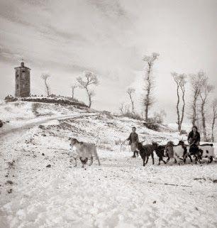 ofisofi: Εικόνες από τον ελληνοϊταλικό πόλεμο. Φωτογραφίες του Δ.Χαρισιάδη-Γυναίκα με παιδί και κατσίκες σε χιονισμένο τοπίο. Β. Ήπειρος. 1940.