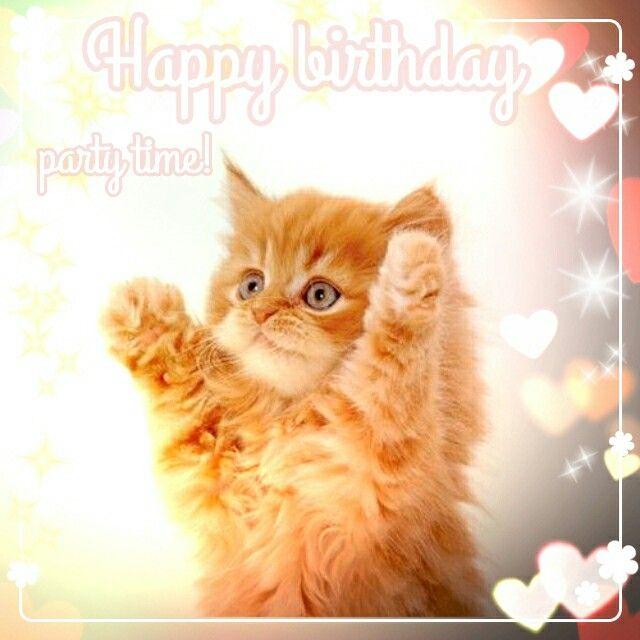 Wishes Zelf Bewerkt - Happy Birthday Kitten