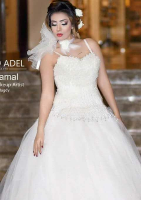 Wedding dresses wiki2017