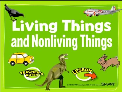 11 best videos livingnonliving images on pinterest kinder science living and nonliving things smartboard lesson ccuart Image collections