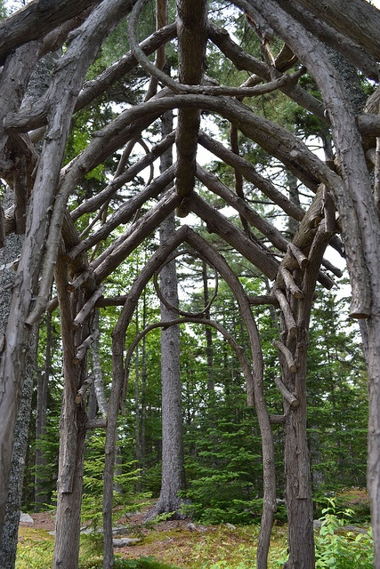 Twig arbor 02 by Rebecca Reinhart, via Flickr so almost like the lords of the rings.