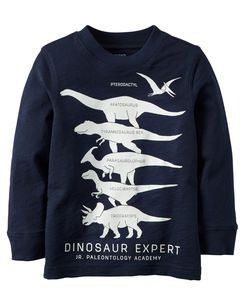 Long-Sleeve Glow-In-The-Dark Dinosaur Expert Graphic Tee