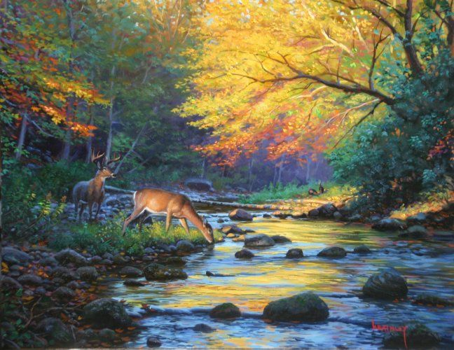 Wild America by Mark Keathley ~ autumn trees river deer