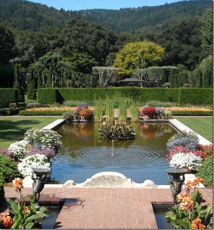 134 best images about filoli on pinterest gardens for Filoli garden pool