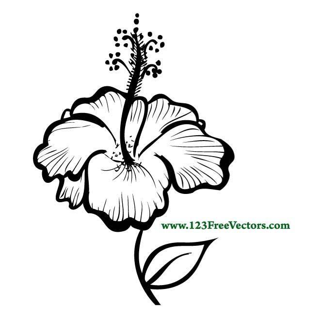 Vector Hibiscus Flower Clipart Best Flower Stencil Flower Outline Flower Silhouette