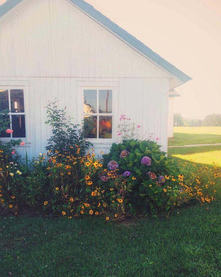 "themountainlaurel: ""Morning on my grandparents farm """