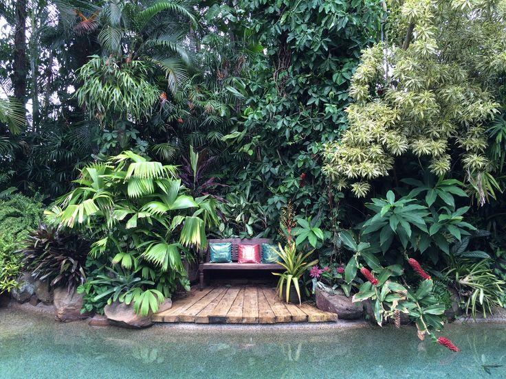 1000 images about landscape tropical dennis hunsdcheidt for Garden pool dennis mcclung