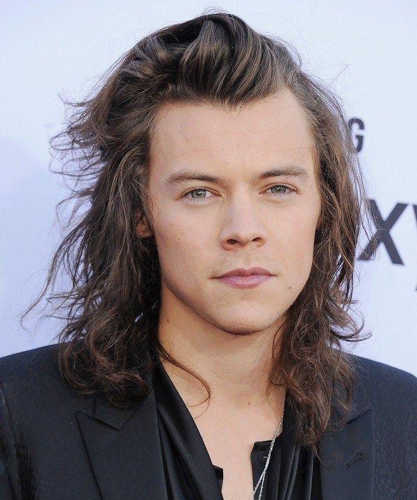 Harry Styles Height, Weight, Biceps Size and Body Measurements