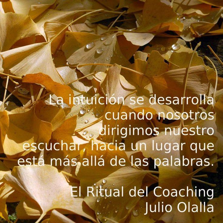 Coaching / Julio Olalla