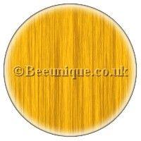 Pravana Yellow