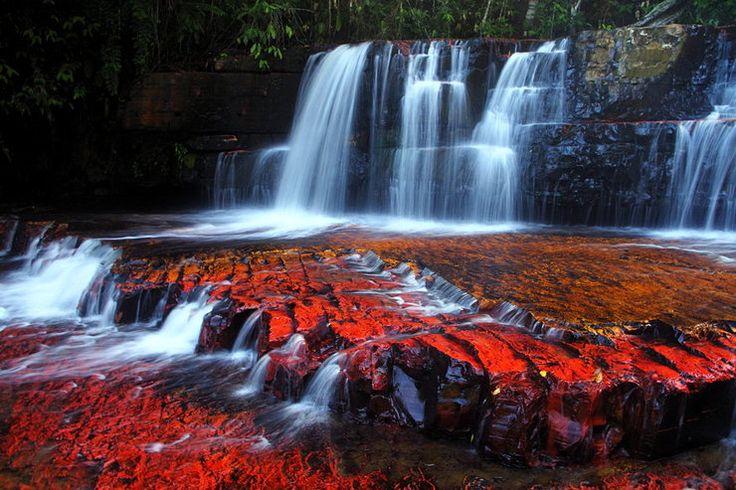 Wenezuelska piękność Gran Sabana