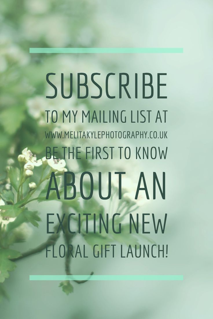 An exciting launch coming this AW 17 the perfect gift for flower lovers!