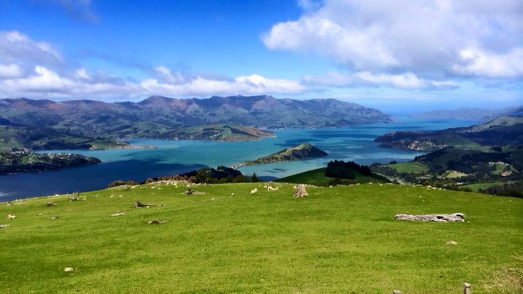 Easter School Holiday Offer In Akaroa