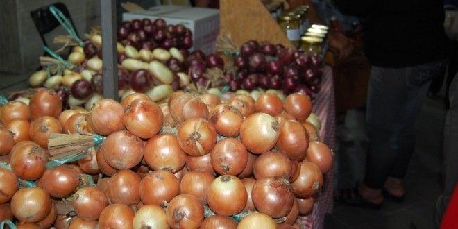Cannara, la festa della Cipolla convince il grande pubblico - Bettona oggi - notizie da Bettona