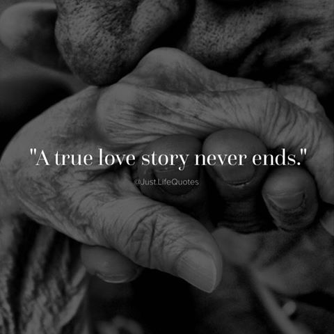 A True Love Story Never Ends love love quotes quotes quote love sayings love…