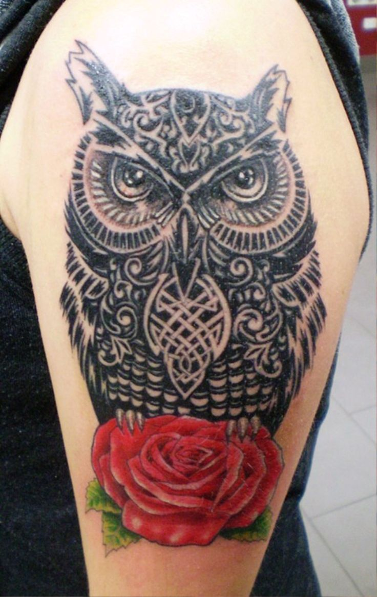 62 best cover up ideas images on