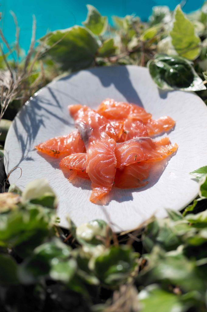 Как правильно солить лосось!