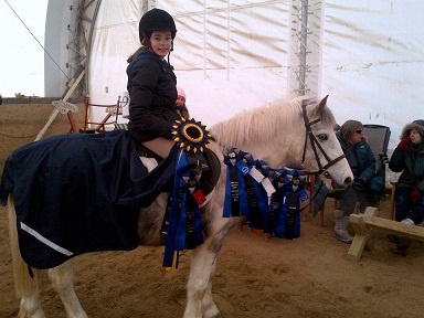 Bomb Proof Small Pony - Free Lease AVAILABLE FOR FREE LEASE - ON PROPERTY ONLYMax is a super adorable pony who will and has! excelled
