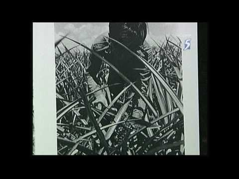 A Tribute to Dr Goh Keng Swee Pt4/6 [Ch5 English] - YouTube From Defense and economic point of view