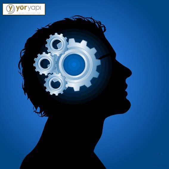 #BilinmeyenGerçekler İnsan beyni, bir gün içinde yaşananların sadece %7'sini hafızada tutar. #Yörpalas #Yöryapı #acıbadem #insanbeyni #hafıza #zeka