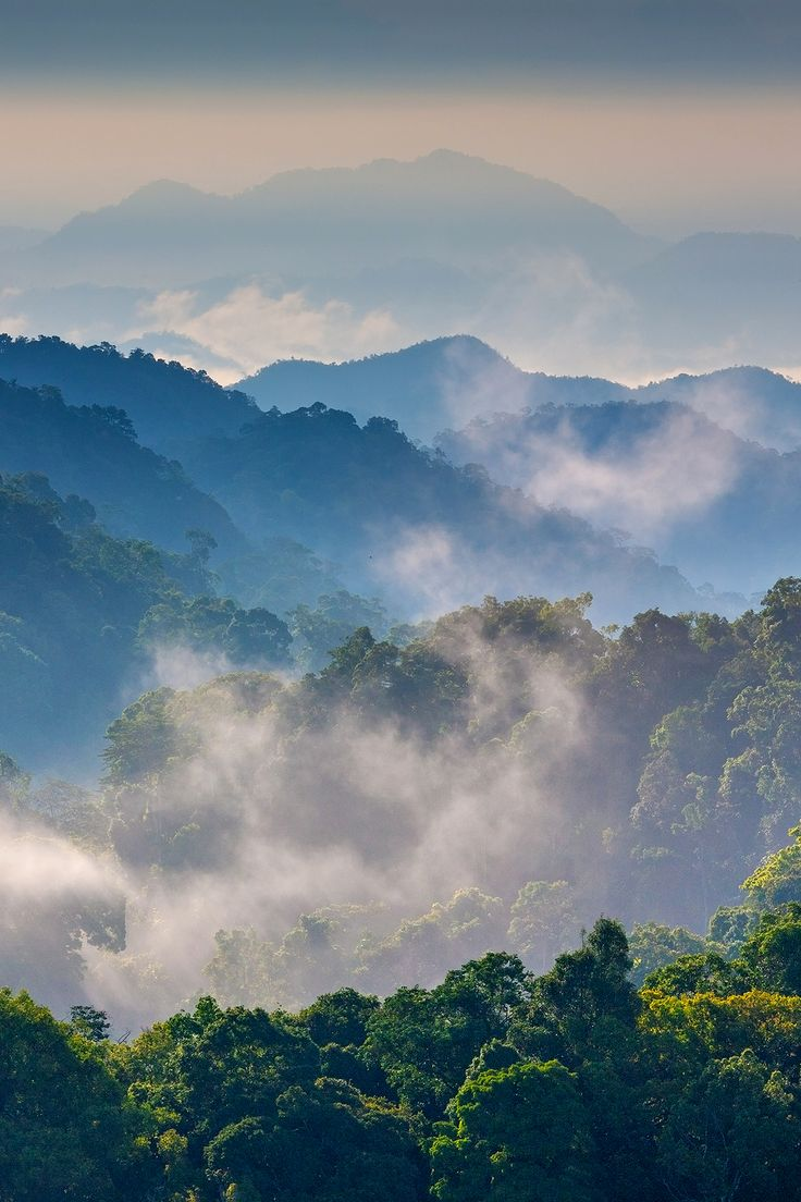 Morning Mist at Tropical Mountain Range. This place is in the Kaeng Krachan National Park, Thailand