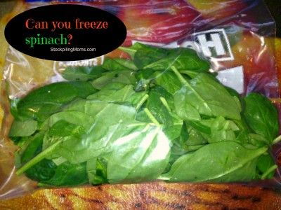 Can you freeze spinach? Yes you can!  It is great for green smoothies and to stretch your budget! #freezing #spinach #smoothies